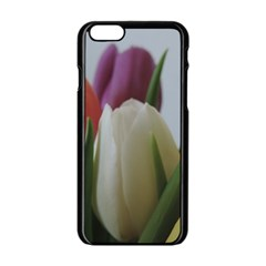 Colored By Tulips Apple Iphone 6/6s Black Enamel Case by picsaspassion