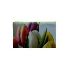 Colored By Tulips Cosmetic Bag (xs)