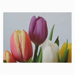 Tulip Spring Flowers Collage Prints by picsaspassion