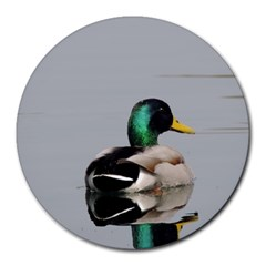 Swimming Duck Round Mousepads by picsaspassion