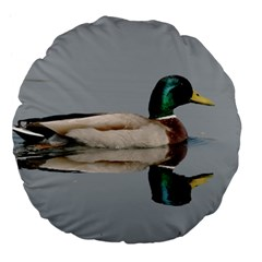 Wild Duck Swimming In Lake Large 18  Premium Flano Round Cushions by picsaspassion