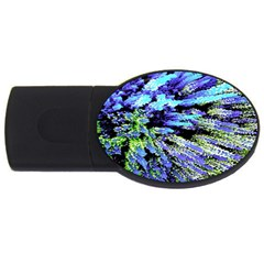 Colorful Floral Art Usb Flash Drive Oval (4 Gb)  by yoursparklingshop