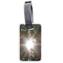 Sun Rays Through White Cherry Blossoms Luggage Tags (one Side)  by picsaspassion