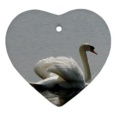 Swimming White Swan Ornament (heart)  by picsaspassion