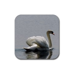 Swimming White Swan Rubber Square Coaster (4 Pack)