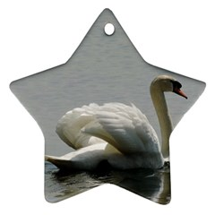 Swimming White Swan Star Ornament (two Sides)  by picsaspassion