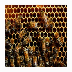 Bees On A Comb Medium Glasses Cloth