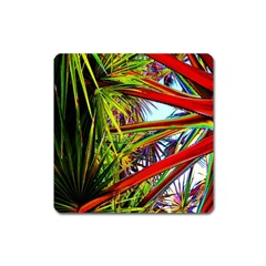 Kostenloses Leaves Square Magnet by AnjaniArt