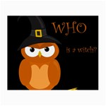 Halloween witch - orange owl Small Glasses Cloth Front