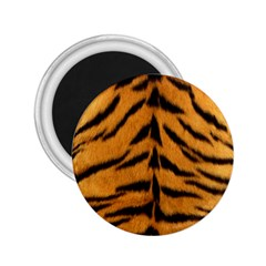 Tiger Skin 2 25  Magnets by AnjaniArt