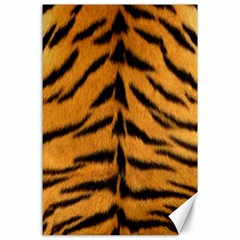 Tiger Skin Canvas 24  X 36