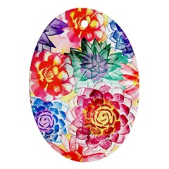 Colorful Succulents Oval Ornament (two Sides) by DanaeStudio