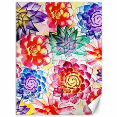 Colorful Succulents Canvas 36  X 48   by DanaeStudio