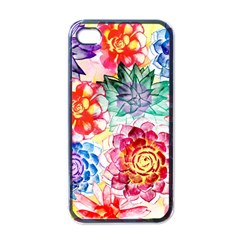 Colorful Succulents Apple iPhone 4 Case (Black)