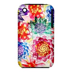 Colorful Succulents Apple iPhone 3G/3GS Hardshell Case (PC+Silicone)