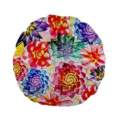 Colorful Succulents Standard 15  Premium Flano Round Cushions by DanaeStudio