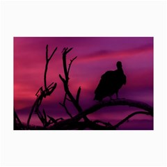 Vultures At Top Of Tree Silhouette Illustration Collage Prints