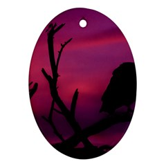 Vultures At Top Of Tree Silhouette Illustration Oval Ornament (Two Sides)
