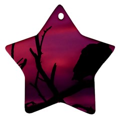 Vultures At Top Of Tree Silhouette Illustration Star Ornament (Two Sides)