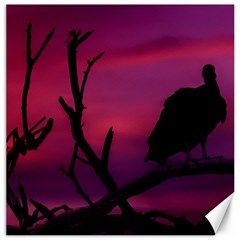 Vultures At Top Of Tree Silhouette Illustration Canvas 12  x 12
