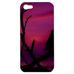 Vultures At Top Of Tree Silhouette Illustration Apple iPhone 5 Hardshell Case