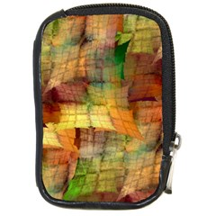 Indian Summer Funny Check Compact Camera Cases by designworld65