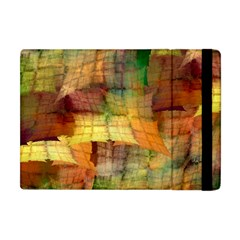 Indian Summer Funny Check Apple Ipad Mini Flip Case by designworld65