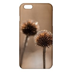 2  Verwelkte Kugeldistel Iphone 6 Plus/6s Plus Tpu Case