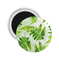 Fern Leaves 2 25  Magnets by DanaeStudio