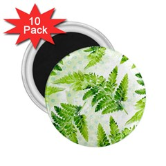 Fern Leaves 2 25  Magnets (10 Pack)  by DanaeStudio