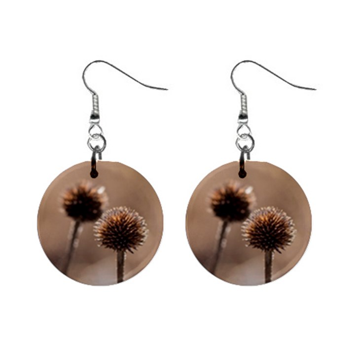Withered Globe Thistle In Autumn Macro Mini Button Earrings