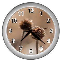 Withered Globe Thistle In Autumn Macro Wall Clocks (silver)  by wsfcow