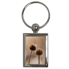 Withered Globe Thistle In Autumn Macro Key Chains (rectangle)  by wsfcow