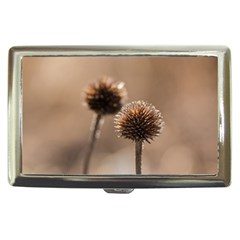 Withered Globe Thistle In Autumn Macro Cigarette Money Cases by wsfcow