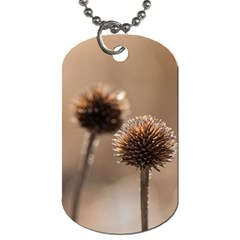 Withered Globe Thistle In Autumn Macro Dog Tag (two Sides)