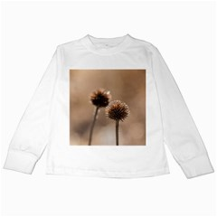 Withered Globe Thistle In Autumn Macro Kids Long Sleeve T Shirts