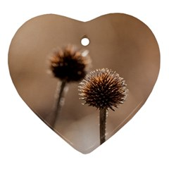 Withered Globe Thistle In Autumn Macro Heart Ornament (2 Sides) by wsfcow