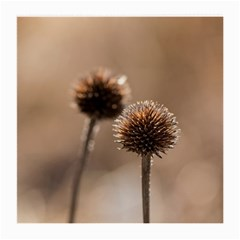 Withered Globe Thistle In Autumn Macro Medium Glasses Cloth by wsfcow