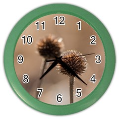 Withered Globe Thistle In Autumn Macro Color Wall Clocks by wsfcow