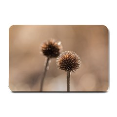 Withered Globe Thistle In Autumn Macro Small Doormat  by wsfcow