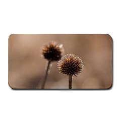 Withered Globe Thistle In Autumn Macro Medium Bar Mats by wsfcow