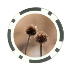 Withered Globe Thistle In Autumn Macro Poker Chip Card Guards (10 Pack)  by wsfcow