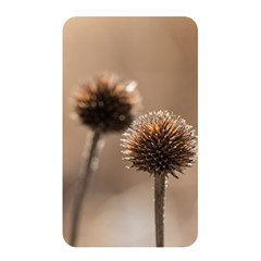 Withered Globe Thistle In Autumn Macro Memory Card Reader by wsfcow