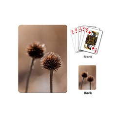 Withered Globe Thistle In Autumn Macro Playing Cards (mini)  by wsfcow
