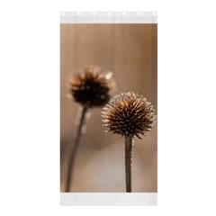 Withered Globe Thistle In Autumn Macro Shower Curtain 36  X 72  (stall)  by wsfcow