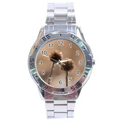 Withered Globe Thistle In Autumn Macro Stainless Steel Analogue Watch by wsfcow
