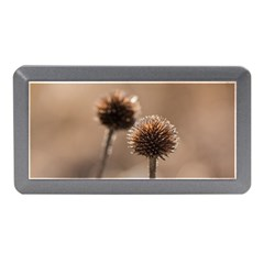Withered Globe Thistle In Autumn Macro Memory Card Reader (mini) by wsfcow