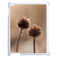 Withered Globe Thistle In Autumn Macro Apple Ipad 2 Case (white) by wsfcow