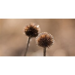Withered Globe Thistle In Autumn Macro You Are Invited 3d Greeting Card (8x4)