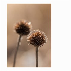 Withered Globe Thistle In Autumn Macro Small Garden Flag (two Sides) by wsfcow